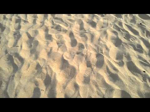 Goa's Calangute-Baga beach tour under 3 mins!!