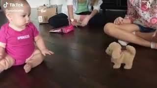 babies funny videos