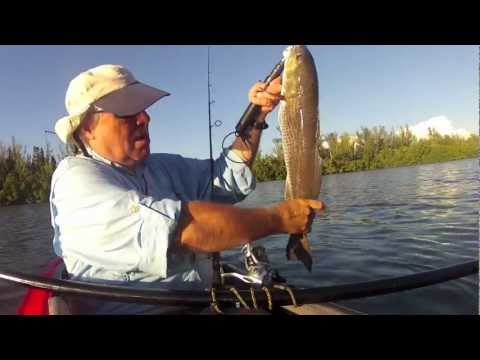 Kayak Fishing, Redfish, Snook, Pine Island Sound