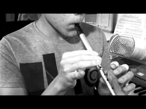 Lord Of The Rings Theme on Tin Whistle (Pennywhistle) Music Videos
