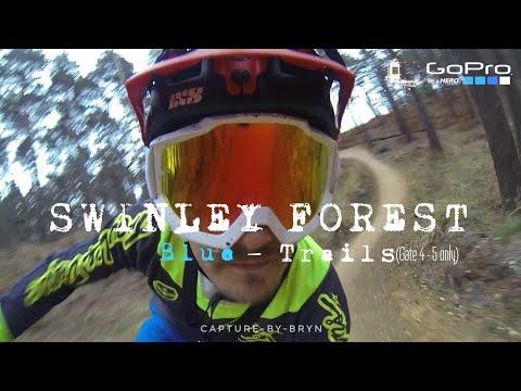 Swinley Forest DH FreeRide Blue Trails Mountainbike GoPro 21/04/2017
