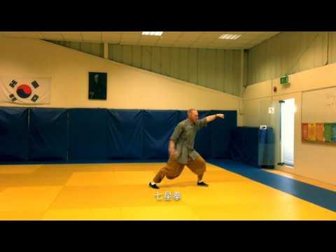 Shaolin Lotus - Seven Star Fist