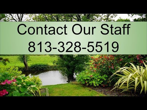 Professional Lawn Service Tarpon Springs FL - Schedule at - 813 328 5519