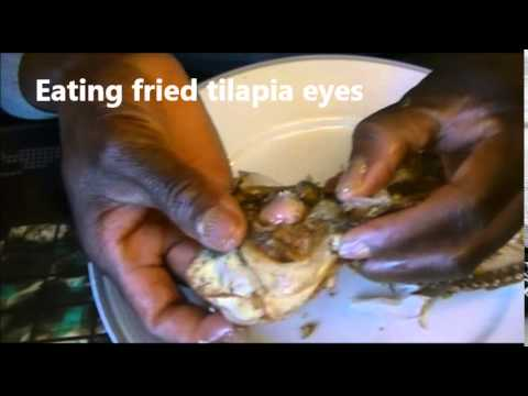 Some Bizarre Eats  Eating A Fried Tilapia Fish Head And Otoliths