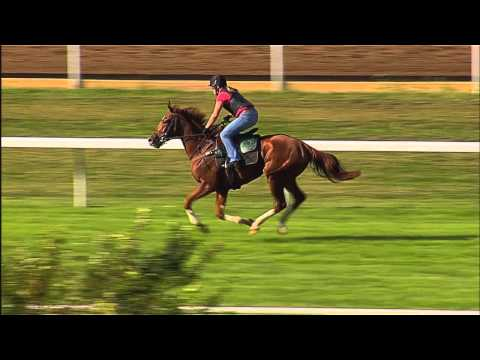 Personal Diary works at Keeneland - Sept. 18, 2014