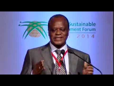 DSDS14:Ministerial sess1,HE Mr Henri Djombo,Tackling Energy,Water &Food Security Challenge in Africa
