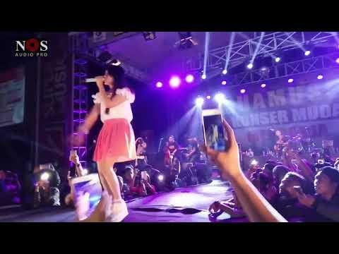 Jaran Goyang - Live Konser Via Vallen feat SERA - www.nosaudiopro.com