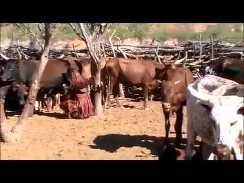 African Red skinned women Himba tribe life at Namibia