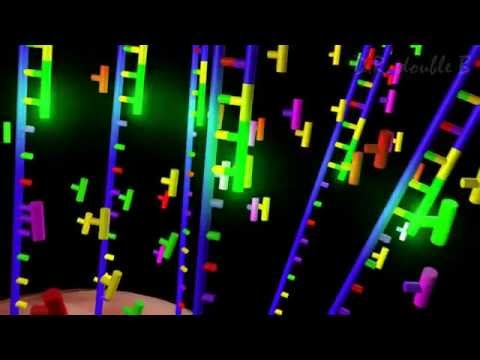 Next Generation Sequencing Animation