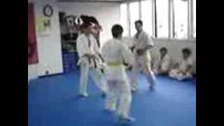 Kyokushin karate Dojo Kumite low Kick