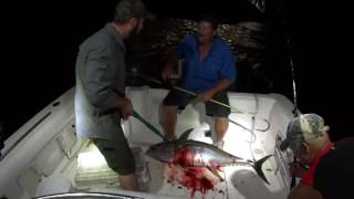 Yellowfin Smack Down 2016