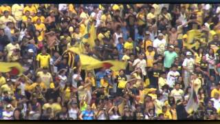 El Color América vs Pumas, J07, A14, 30Ago2014