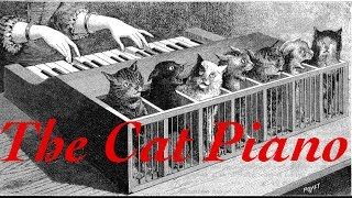 All About: The Cat Piano