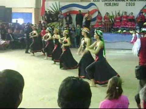 Mapuche, Una hermosa Danza.