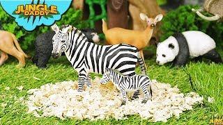 "SAFARI ANIMALS Babies! ""Jungle Daddy"" zebra bear wild schleich zoo toys for kids"