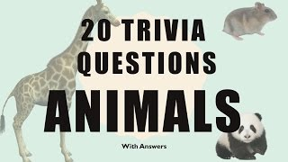 20 Trivia Questions (Animals) No. 1