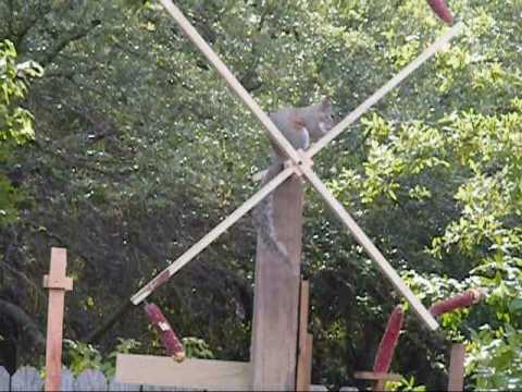 Diy Spinning Squirrel Feeder