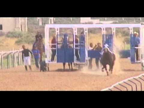 El Alacran vs La Catarina Carreras de caballos