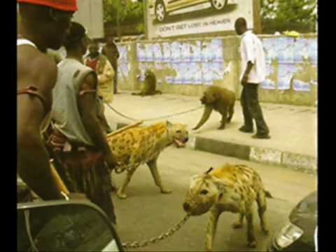 Hyena Men of Nigeria
