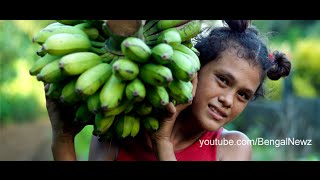 Empowered Lives: Chittagong Banana Farmers