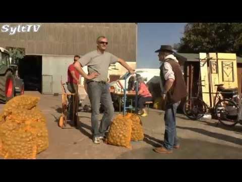 """Morsumer Kartoffeln für den """"Guten Zweck"""" verkauft"""