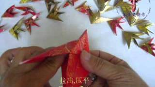 Origami Angel Fish 