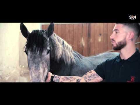 Pasión por los caballos / Passion for horses