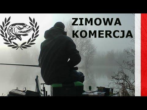 Zimowa Komercja. Karpie Na Spławik I Grunt.  Tyczka Oraz Feeder.
