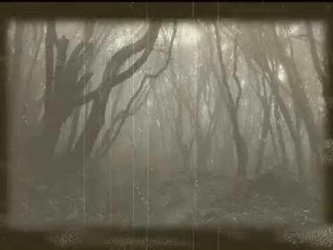 Evanescence - Understanding (Wash It All Away)