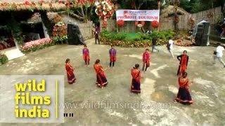 North-east Indian Chakma dance from Tripura : a visual extravaganza!