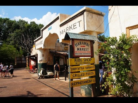 Harambe Market opens at Animal Kingdom with African-inspired food and theming