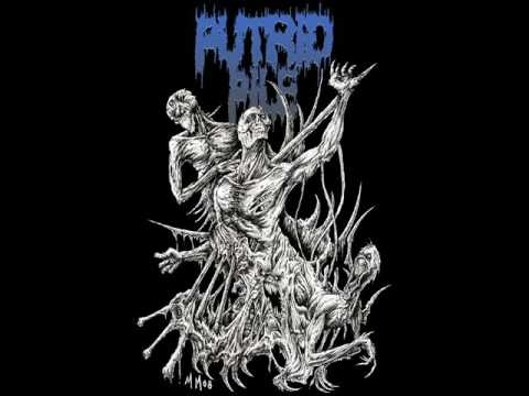 Putrid Pile - Food For The Maggots