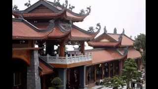 Tập ảnh lế chùa trường th Việt Hòa