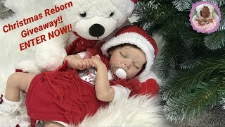 **ENTRIES NOW CLOSED** Christmas Reborn Giveaway!!