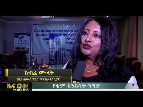 ENN: Trade Agreement Between Egypt and Ethiopia - የቁም እንስሳት ንግድ በኢትዮጵያና በግብፅ መካከል ተፈረመ