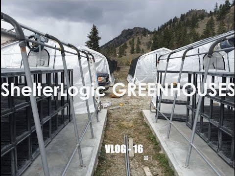 WTF VLOG - 16 ShelterLogic GREENHOUSES