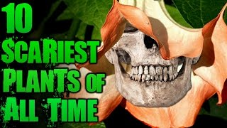 10 Unbelievably Scary Plants | TWISTED TENS #41