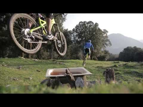 Orbea Enduro  Team Stage