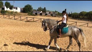 Passion Equitation En Vacances 2  Jour 2  On Travaille La Pirouette Au Galop