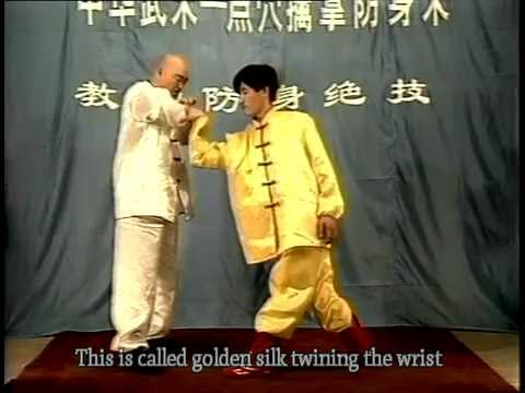 Kong fu of Pressure-Points Attack (dian xue shu qin na) 3 Image 1