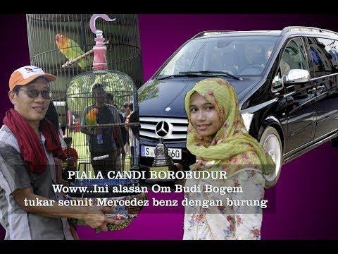 Love Bird Betet milik H. Ulum Malang