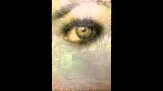 Watch Evanescence Self Esteem video