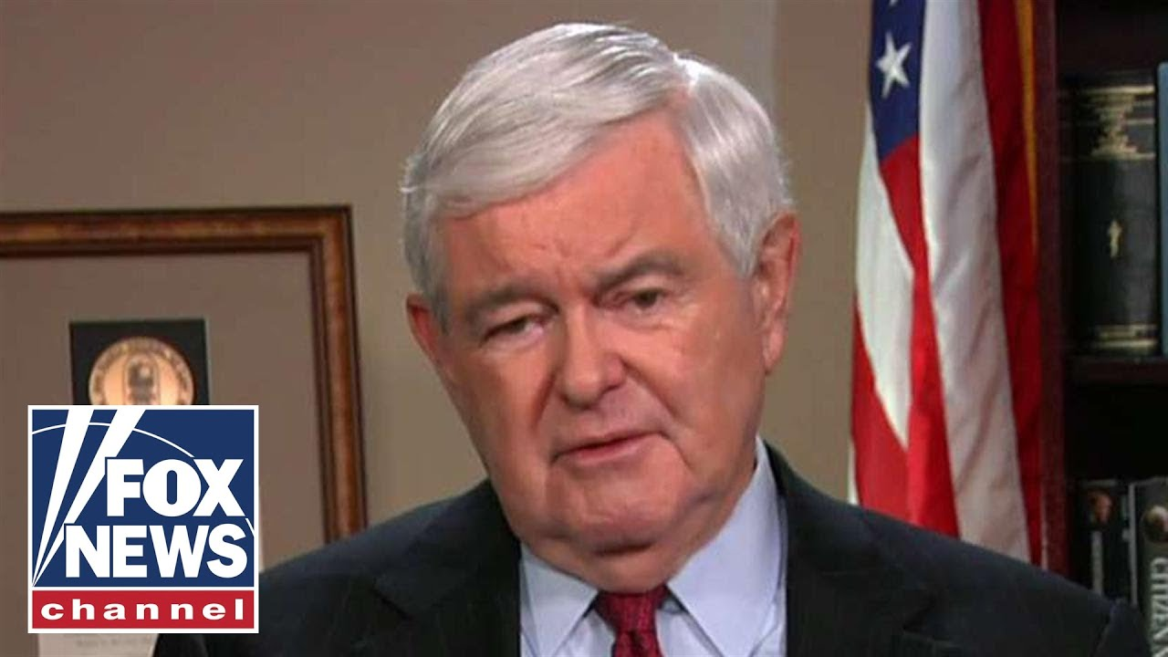 Gingrich's advice to Trump on dealing with a Democrat House