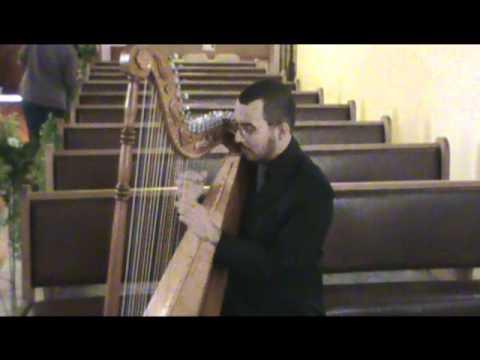 Orinoco Flow (Enya) - Vinicius Medrado (Harpa)
