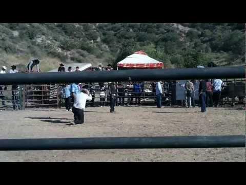 Sevina, Michoacan fiesta al Espiritu Santo Patron de Sevina, Santa Clarita, Ca 6-2-12.mov