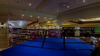 Boardwalk Boxing-Round 3: Media Workout