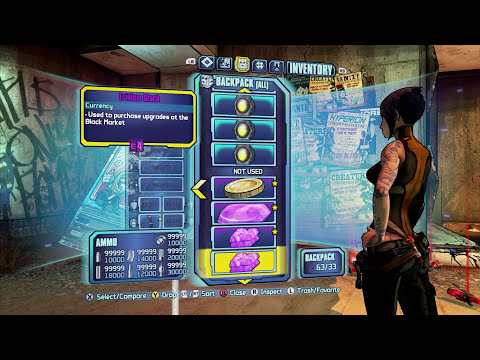 Borderlands 2 - Consumables Save #1【PC/XBOX/PS3】