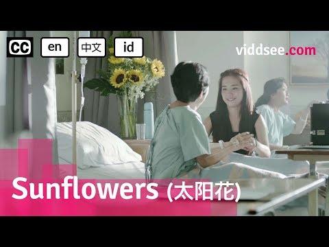 Sunflowers - Malaysia Drama Short Film // Viddsee.com