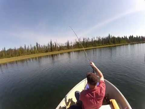 Fly Fishing BC For Trophy Rainbow Trout - Reel Scream 2012.mp4