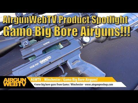 Big Bore Ariguns from Gamo / Winchester - Accuracy. Power. Shot Count!  - by AirgunWebTV